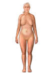 Anterior Female Figure, Mid Sixties