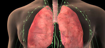 Lung Cancer Staging: Small Cell