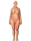 Anterior Female Figure, Mid Fifties