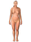 Anterior Female Figure, Mid Forties